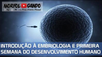 Introdução à Embriologia Humana e Primeira Semana do Desenvolvimento Humano (Aula Completa)