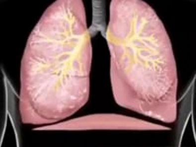 asculta pulmonar