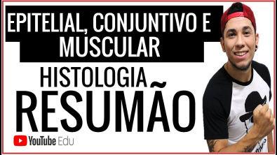 Aula 24: Histologia - TECIDO Epitelial/Conjuntivo/Muscular - Aula de Biologia, ENEM e Vestibulares