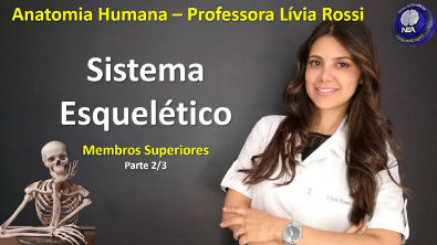 Anatomia Humana - Sistema Esquelético - Membros Superiores (2/3)