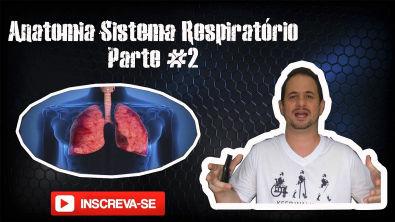 Anatomia Sistema Respiratório #2 - Ventilação Mecânica