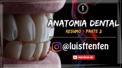 Anatomia Dental (RESUMO) - Parte 2