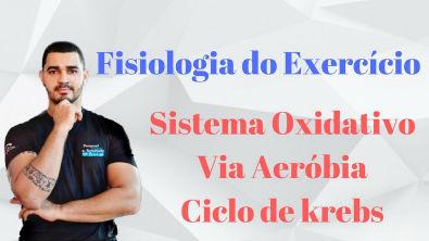 Curso Fisiologia do Exercício Aplicada - Sistema Oxidativo - Via Aeróbia (ciclo de Krebs) - Aula 04