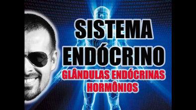 Sistema Endócrino: Glândulas endócrinas e hormônios secretados - Anatomia Humana - Vídeo Aula 033