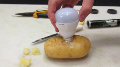 Faltou Luz em Casa? Liga na Batata - Mágica - Light a Bulb with Potato - Magic