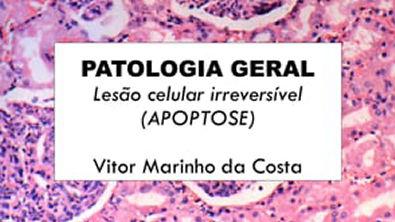 Lesão irreversível (APOPTOSE ) - PARTE I