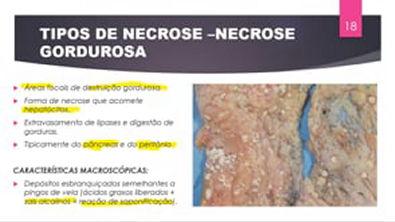 Lesão irreversível (NECROSE) - PARTE III