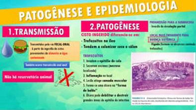 AMEBÍASE - Parasitologia
