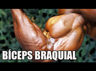 Origem, inserção e ação do músculo BÍCEPS BRAQUIAL - Rogério Gozzi