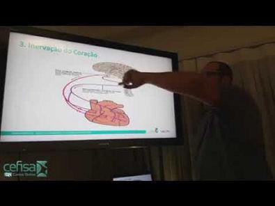 02 Analise ( VARIABILIDADE DA FREQUÊNCIA CARDÍACA) fibriomialgia e dores cronicas 240p via Skyload