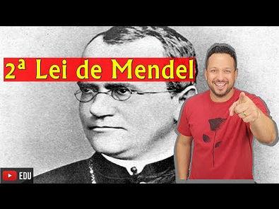 2ª Lei de Mendel - Genética