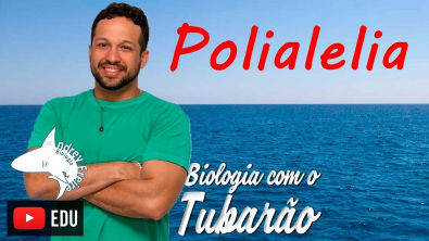 Polialelia ou Alelos Múltiplos - Genética