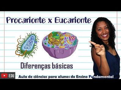 Diferenças célula Procarionte x Eucarionte