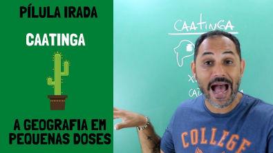 CAATINGA - PÍLULA IRADA