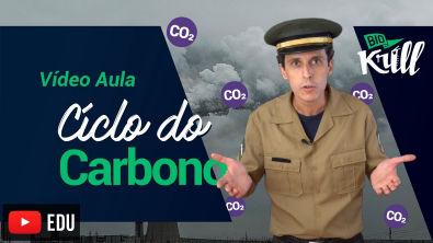 Vídeo aula- Ciclo do Carbono