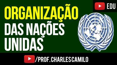 ORGANIZAÇÃO DAS NAÇÕES UNIDAS - ONU