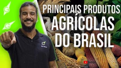 Principais Produtos Agrícolas do Brasil - Geobrasil {Prof Rodrigo Rodrigues}