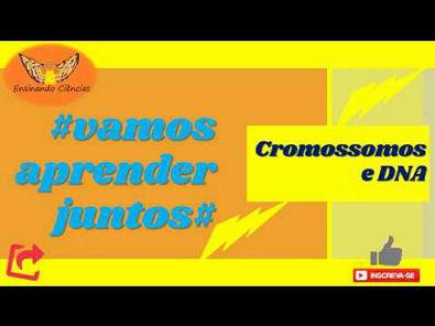 Vídeo 16 - Cromossomos e DNA