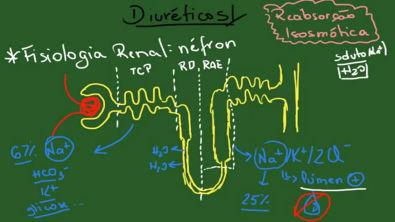 Diuréticos Resumo Farmacologia