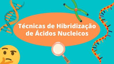 VÍDEO TÉCNICAS DE HIBRIDIZAÇÃO - BIOLOGIA MOLECULAR