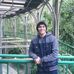 Vinicius Souza Alves