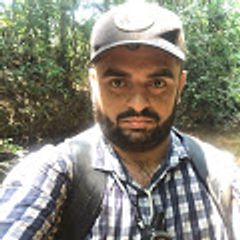 Bioma Florestal