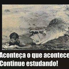 Freitas Carvalho
