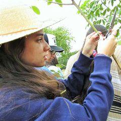 Jessica Carolina dos Santos Misael