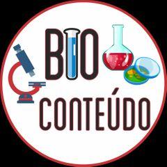Bioconteudo Yury Batista